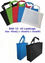 BAG-12 non woven bag