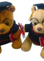 CGFG-132-Graduation-Bear